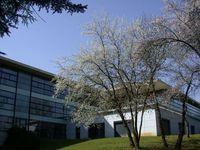 Département HSE AUCH